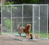 Chain link dog kennels cage