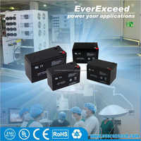 EverExceed ISO certificated 4v sealed VRLA battery