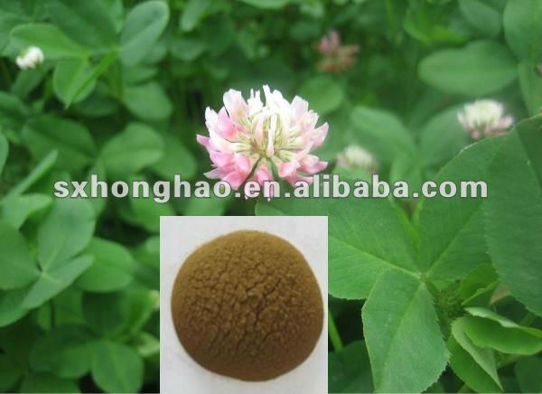 High Quality 8% Isoflavones HPLC Red Clover Extract