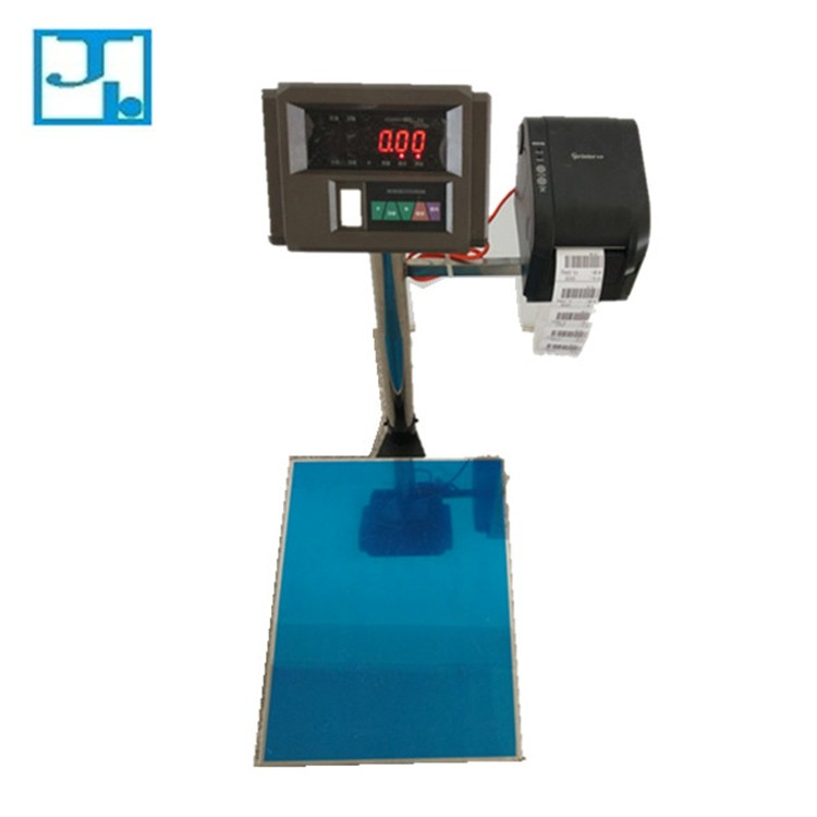 High quality 500 kg digital platform weigh scale with printer