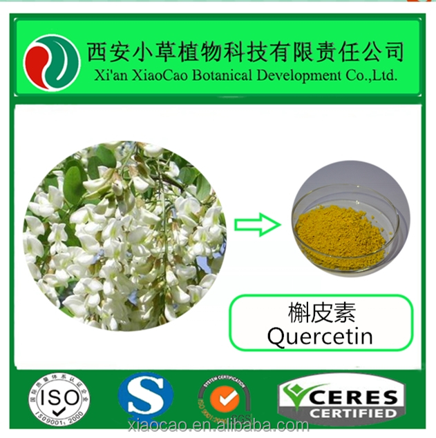 GMP Factory Supply Quercetin 98% HPLC, Sophora Japonica Extract
