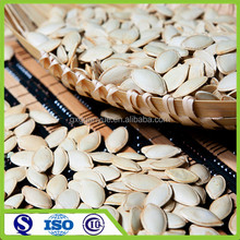 Edible dried snow white melon seeds,2016 new crop pumpkin seeds in shell