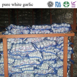 fresh whole garlic for sale (shouguang factory)