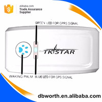 tk star gps tracker new IP67 waterproof mini pet gps tracker/ mini pet gps tracking/real time tracking gps dog tracker