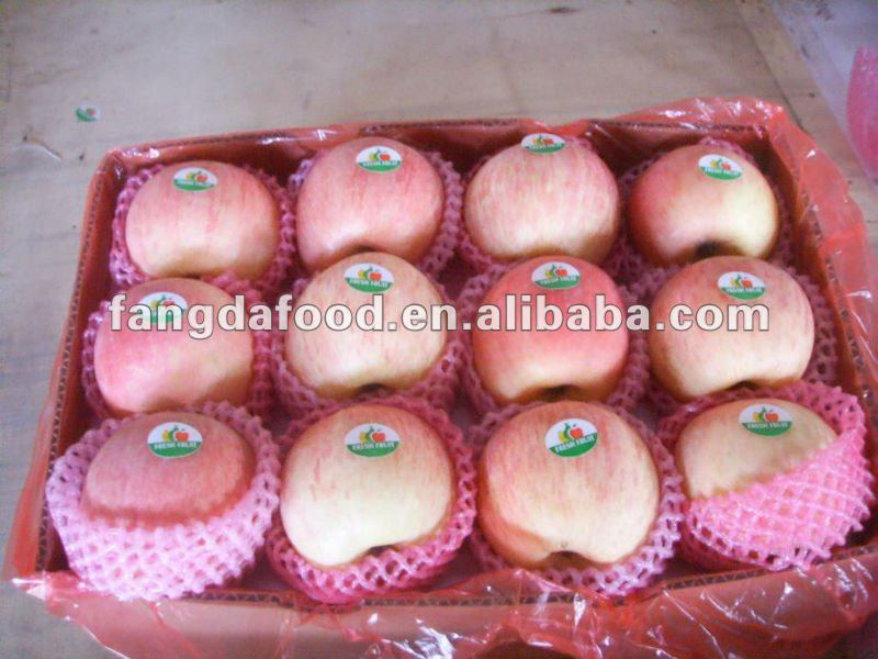 fresh red fuji apple from fangda company