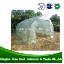 Plastic Tunnel Agriculture Greenhouse for Planting