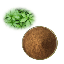 Factory Price Gynostemma Pentaphylla Extract/ Jiaogulan Extract