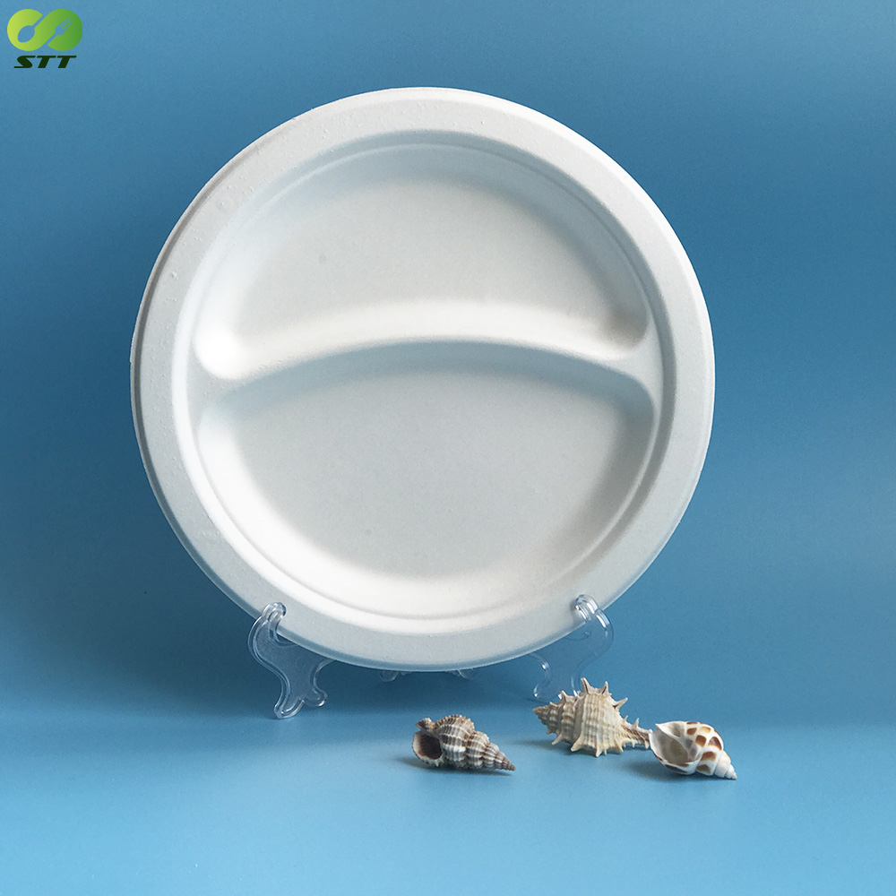 China cheap biodegradable sugarcane bagasse two compartment dinner plate with high quality