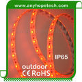 waterproof IP65 24 volt warm white 2400K single color flexible smd 3528 led strip light