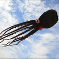 60m black octopus kite