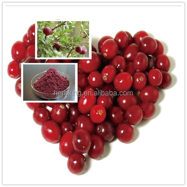 Best price and high quality Natural Cranberry Dry Extract for women health