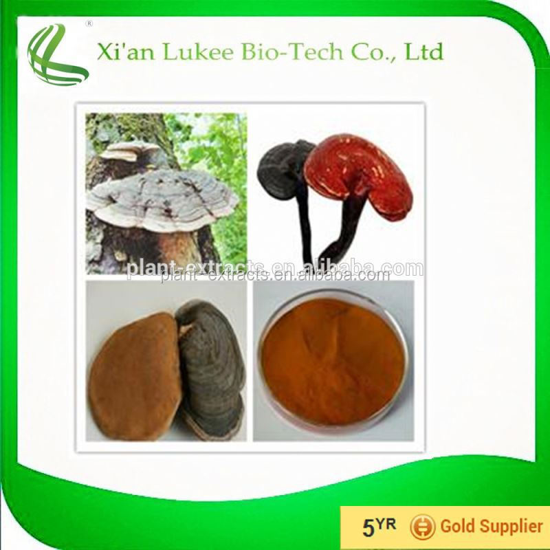 Lingzhi Extract / Red Reishi Mushroom Extract /Ganoderma Lucidum Extract