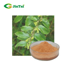 Capparis hainanensi stem extract useful in seminal weakness