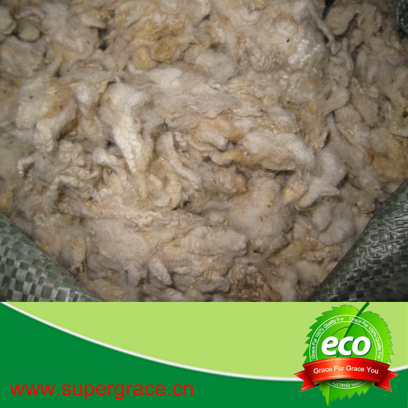 Factory Price Chinese Scoured Wool
