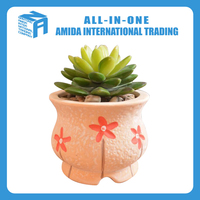 elegant design ceramic flower pots