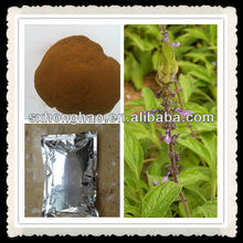 Good Quality Weight-loss Product Coleus Forskohlii Extract 20% Forskohlin