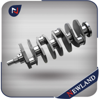 Cast or Forged Crank Shaft for Isuzu 4FC1 4FD1 Crankshaft