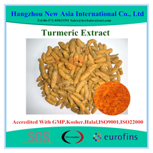 curcumin solvent extraction plants
