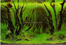 fashion aquarium background 3d aquarium background