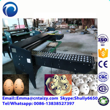 High quality egg grading machine egg classifier with CE certificate egg candling equipment