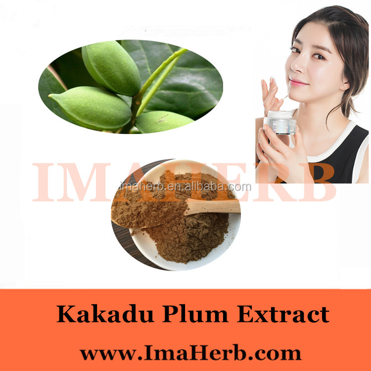 High Quality Organic kakadu plum extract best price