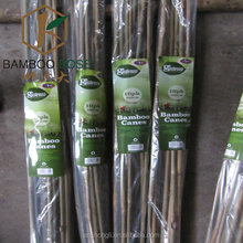 Grower Edge tonkin bamboo stakes of retail packaging Agricultural plant support raw bamboo stakes