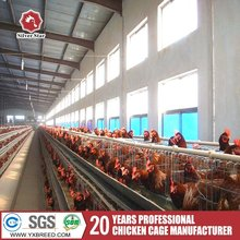 Poultry farming equipment large animal cages for chicken price