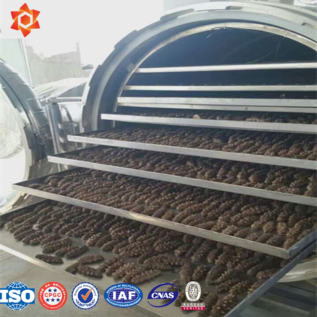 Home Freeze Dryer For Food/Freeze Dryer For Food/Vacuum Dryer For Fruit And Vegetable