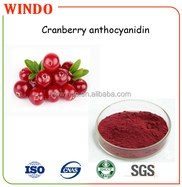 100% natural cranberry juice extract/1%-36% Anthocyanidins Cranberry Extract