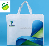 2017 Costom Design Cheap Custom Promotion Wholesale Recycled Foldable Printing Non Woven Bag