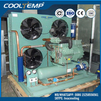 Refrigeration Parts Application R404a Bitzer Cold Room Condensing Unit For Cold Room