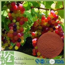 High Quality 100% Pure Natural Grape Seed Extract Anti-oxidants OPC 95%