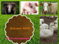 meat and bone meal full of beef tallow , strong attract to pigs, poultry and sheep (MBM)