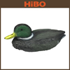 Fox hunting decoys of collapsible duck decoy/inflatable duck decoy