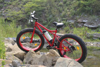 new electric bicycle china,2014 hot sale cruiser beach bike,16*3 tire electric bicycle price