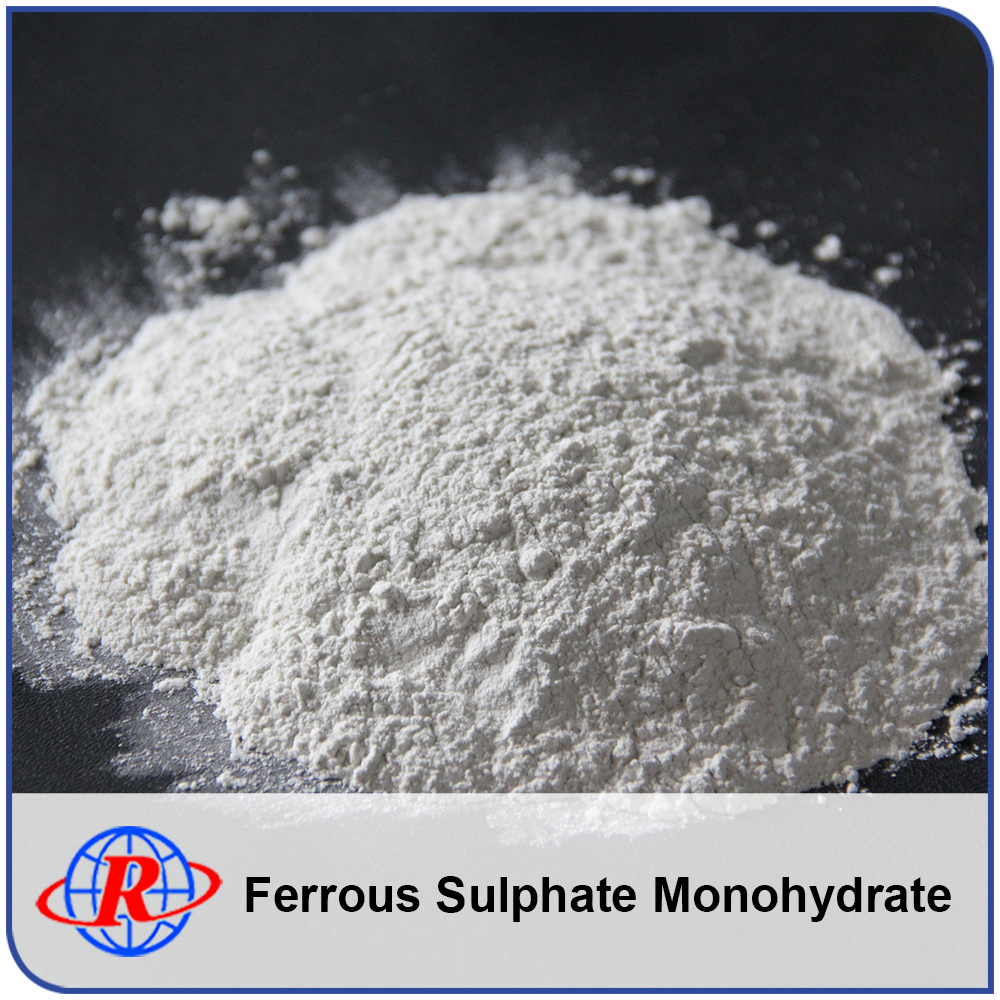 Excellent Price Ferrous Sulfate Price Monohydrate White Powder