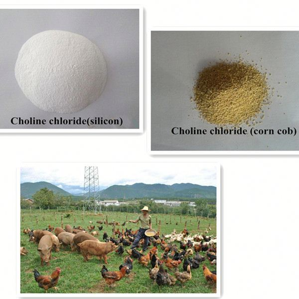 Fami-QS certificated choline chloride powder 50% silica