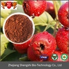 China Factory Supply Fresh Hawthorn Extract Powder,Herb Fruit Extract