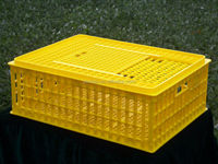 Plastic Chicken Moving Crates