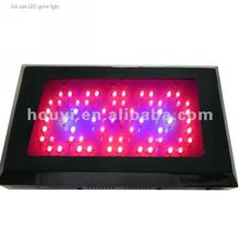 2012 hot sale grow led light 3 watt led grow lights,for rose and tomoto with full spectrum
