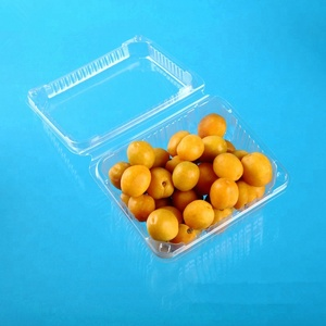 Food Grade Transparent Plastic Blister Clamshell Fruit Packaging Disposable Plastic Box With Lid