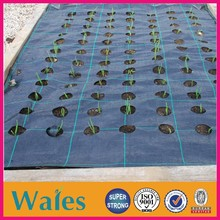 plastic agricultural ground cover