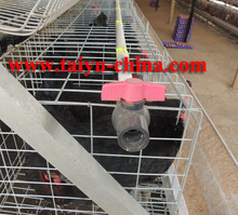New Arrival Cages For Laying Hens Prices