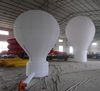 Hot selling inflatable ground balloon, inflatable advertising balloon for sale
