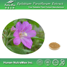 Natural Small Flowered Willow Herb Extract 4:1