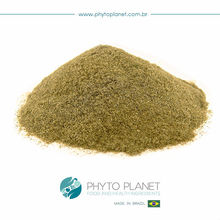 YERBA MATE EXTRACT POWDER