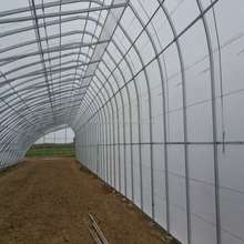 Multi span plastic greenhouses for agriculture production