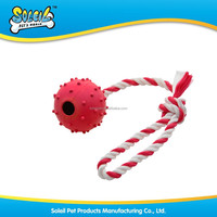 New Pet Toy Floating Rubber Dog Toy