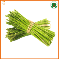 Wholesale Fresh Picking Asparagus With Best
