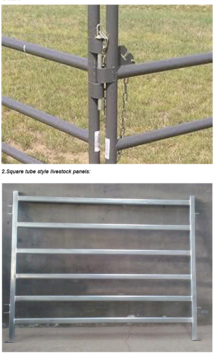 electric galvanized woven-wire livestock fence,used livestock fence,3axles 40t 50-60 head cow livestock fence truck trailer